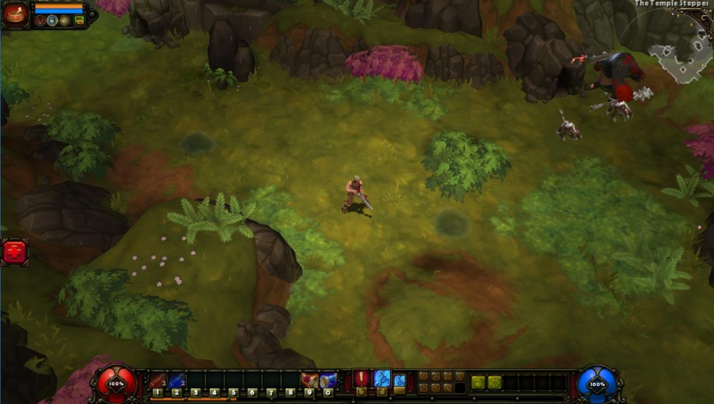 Runic Games   Making the World of Torchlight II
